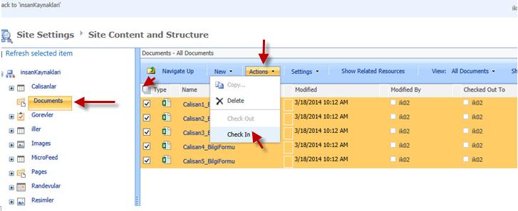 Sharepoint 2013 Dosya İşlemleri-Çoklu Belge Check In