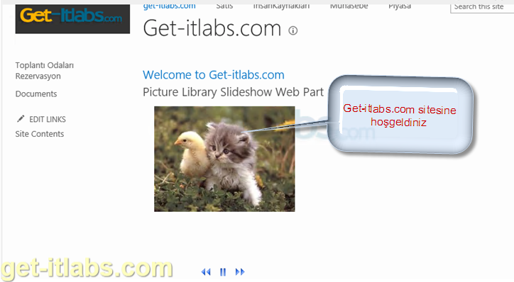 Sharepoint Picture Slide Show Web Part Ekleme